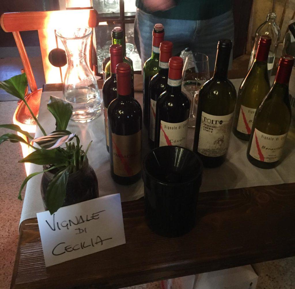 Vignale di Cecilia Natural wines